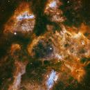 War and Peace (Aka 🦞) Nebula NGC6537,                                Tim Looi