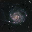 M101 - Pinwheel Galaxy (NGC 5457),                                Ara