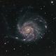 M101 - Pinwheel Galaxy (NGC 5457),                                Ara Jerahian