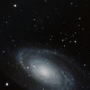 Bode's Galaxy (M81),                                Frank Kane