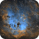 IC410 Tadpoles,                                Gene