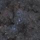 IC 1396,                                RolfW