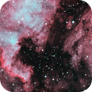 North America Nebula and Pelican Nebula (NGC 7000 and IC 5070),                                Eshan Toorabally