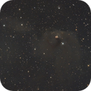 LBN 819 - Dust between NGC1555 and Sh2-239  in Taurus - LRGB Mosaic (2x2),                                Roberto Botero