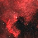 NGC7000 - North America & Pelican Nebula / Cygnus Wall in Ha and Oiii,                                Stuart Stakoff