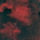 North American and Pelican Nebula,                                Anurag Wasnik