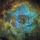 Rosette Nebula - false color @ various focal lengths,                                equinoxx
