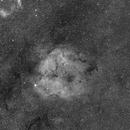 IC 1396 - Elephant's Trunk Nebula in Ha,                                astrodoud