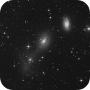 Interacting Galaxies NGC  2968 / 2970 and Ngc 2964,                                sky-watcher (johny)