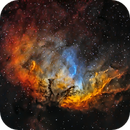 SH2-101 The Tulip Nebula,                                Jason Wiscovitch