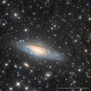 NGC7331 ,                                Elio - fotodistel...