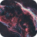 Western Veil nebula two panel mosaic,                                Roy Hagen