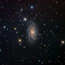 NGC 2336,                                Colin McGill