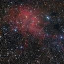 Lion Nebula in Cepheus,                    Michael S.