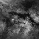 The Butterfly Nebula, Ha Filter,  Starless version,                    David Dvali