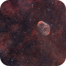 Nebula Season 2020: Crescent + Soap Bubble Nebula,                                Michael S.