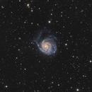M 101 Pinwheel Galaxy,                                JuergenB