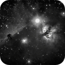 Horsehead and Flame Nebulae with no filters in light polluted skies,                                  Steve Lantz