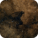 Space Pooch: in memory of Laika (LDN 1795 and NGC 6451),                                Todd