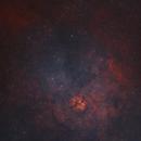 Sh2-124 in Northern Cygnus in HOO,                                Douglas J Struble