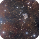 IC 426 and surrounding area,                                Casey Good