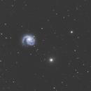 NGC 4254 & neighbours,                                Detlef Möller