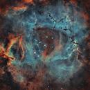 Rosette nebula SHO and RGB stars,                                Thomas LELU