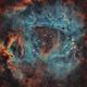 Rosette nebula SHO and RGB stars,                                -Amenophis-