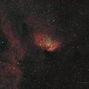 Sh2-101 Tulip Nebula - HOO,                                Richard H