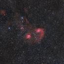 Flaming Star Nebula - Wide Field,                                Robert Eder