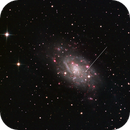 NGC 2403 - HalphaGB - with erupting LBV marked,                                Nick Haigh