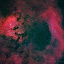 Ced 142 e NGC7822,                                Federico Bossi