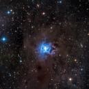Iris Nebula,                                joec.
