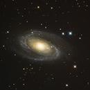 Bode's Galaxy (M81),                    Chris Westphal