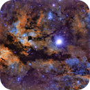 IC 1318 Bird Nesting by Sadr in Cygnus,                                  Scott M. Stirling