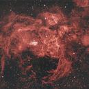 Lobster Nebula,                                NelsonAstrofoto
