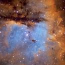 NGC 281 Pacman Nebula Crowd Image,                                Morten Balling