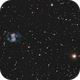 Little Dumbbell M76,                                Mat