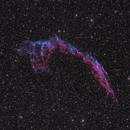 NGC 6992, The Eastern Veil Nebula,                                Dyno05