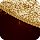 Solar chromosphere and prominence 20170329,                                Sergio Alessandrelli