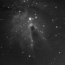 Cone Nebula (NGC 2264) in Ha,                                Ara