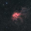 Lion Nebula,                                Bernd Steiner