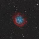 Abell 31 / Sh2-290 - Planetary Nebula in Cancer,                                Bernhard Zimmermann