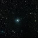 NGC 7023 - Nébuleuse de l'Iris,                                Stephane Neveu