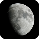 Moon Over Florida,                                Ken Sharp