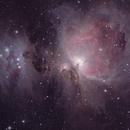 M42,                                vinz13320