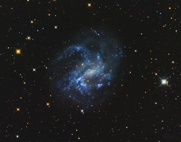 NGC 4395 Spiral Galaxy,                                Jerry Macon