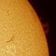 Solar Proeminence,                                Jairo Amaral