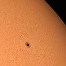 Farewell AR2833, the Mild Mannered Sunspot,                                Steve Lantz