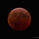 Mondfinsternis vom 21.01.2019,                                Tino Leichsenring